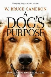 A Dog's Purpose, Cameron Bruce